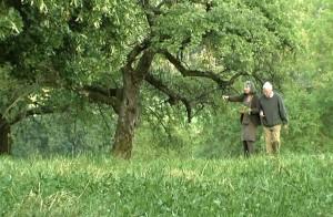 seins-arbres-meh